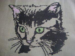 chatn