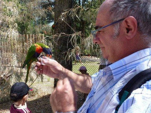 parc-oiseaux-2012-012