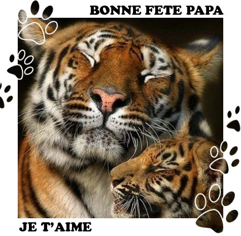 fete-pere-amour-animaux[1]