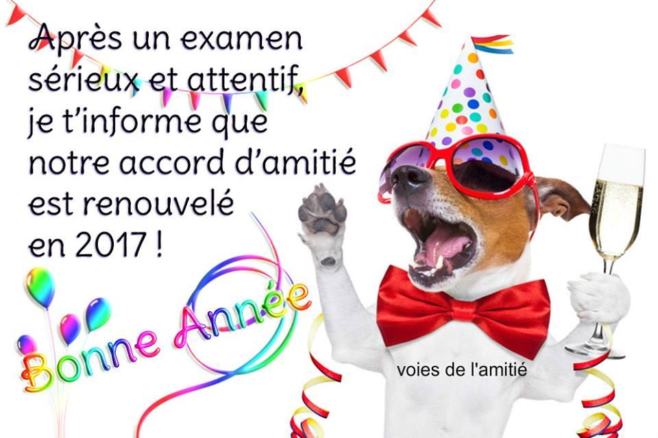 bonne-annee_065