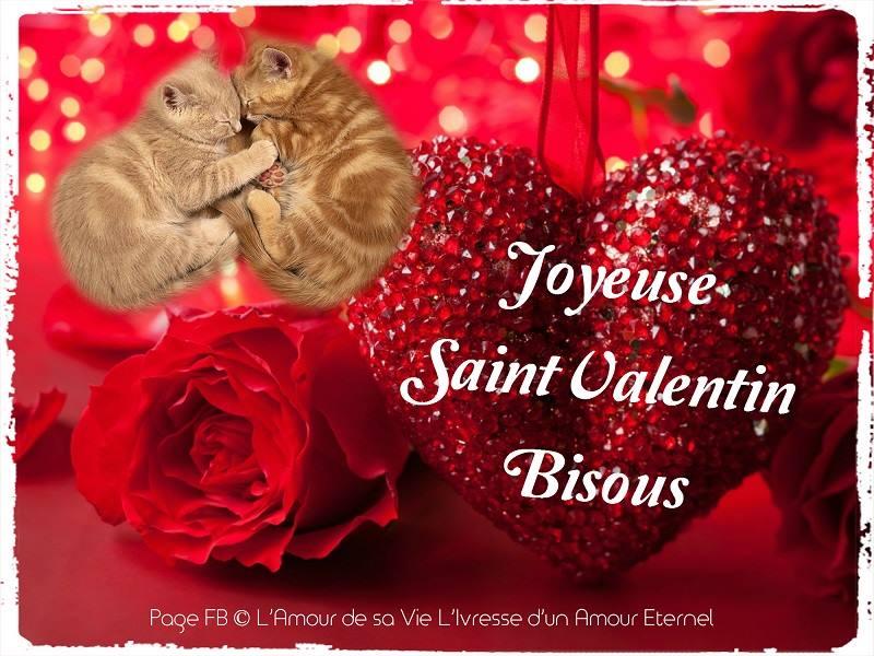 saint-valentin_013